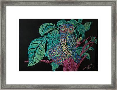 Night Owls Framed Print