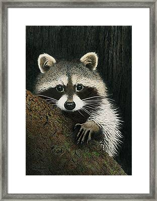 Framed Print featuring the drawing Night Raider by Brent Ander
