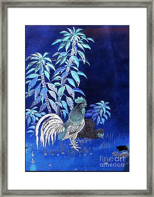 Night Rooster Framed Print by JCYoung MacroXscape