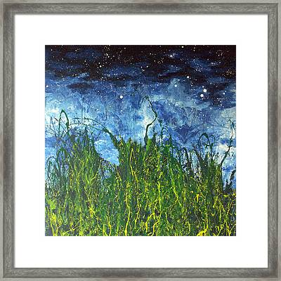 Night Sky 2007 Framed Print