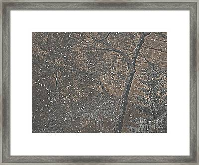 Night Snow Series Bianco Framed Print by Roxy Riou