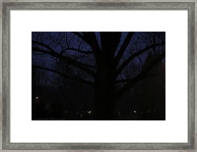 Night Framed Print by Stacie  Goodloe