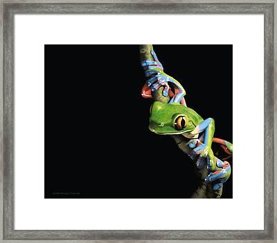 Night Stalker Framed Print by Doug Comeau