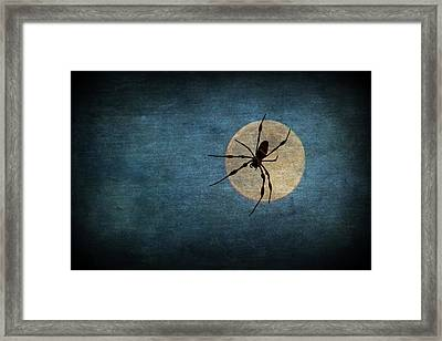 Night Stalker Framed Print
