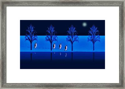Night Walk Of The Penguins Framed Print
