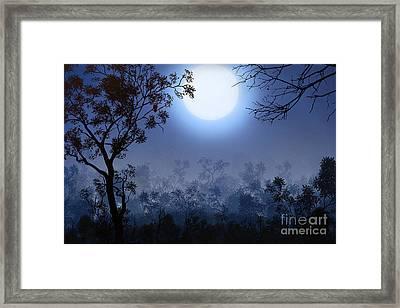 Night Watcher Framed Print by Bedros Awak