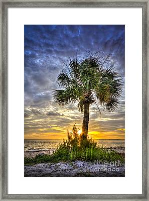 Nightfall Framed Print by Marvin Spates