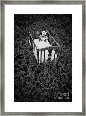 Nightmares And Fairy Tales Framed Print by Edward Fielding