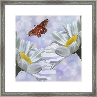 Nights In White Silk 2 Framed Print by Barbara St Jean