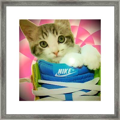 Nike Kitten Framed Print by Alexandria Johnson