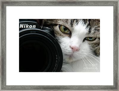 Nikon Kitty Framed Print