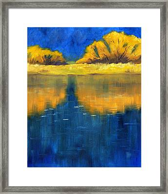 Nisqually Reflection Framed Print