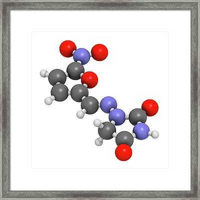 Nitrofurantoin Antibiotic Drug Molecule Framed Print by Molekuul