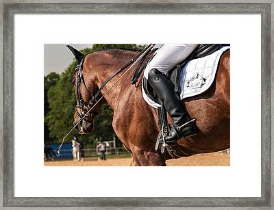 No. A2387 Framed Print by Robert Krajnc