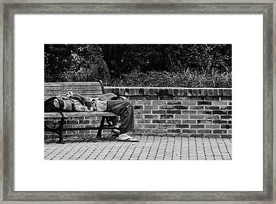 No Comment Framed Print by William Jones