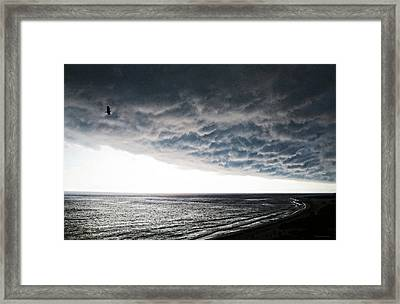 No Fear - Beach Art By Sharon Cummings Framed Print