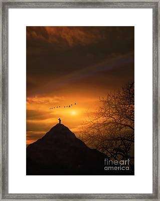 No Greater Love Framed Print by Tom York Images
