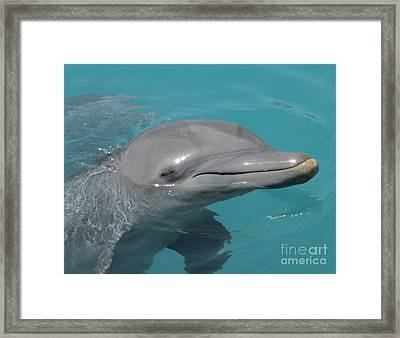 No I Think I Have Done Quite Enough For Today Framed Print by John Malone