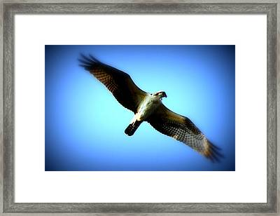 Framed Print featuring the photograph No Limits by Aurelio Zucco