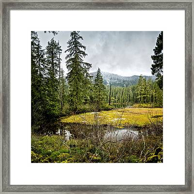 Framed Print featuring the photograph No Man's Land by Belinda Greb