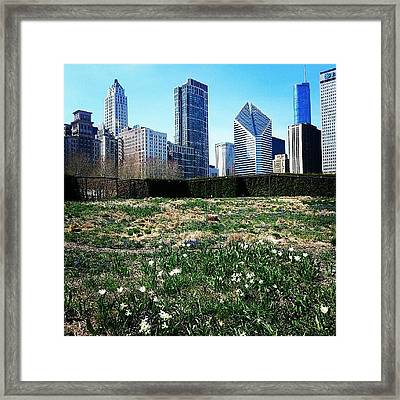 No One In Chicago Should Be Inside This Framed Print