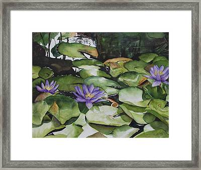 No Room In The Pond Framed Print by Barbara Littenberg