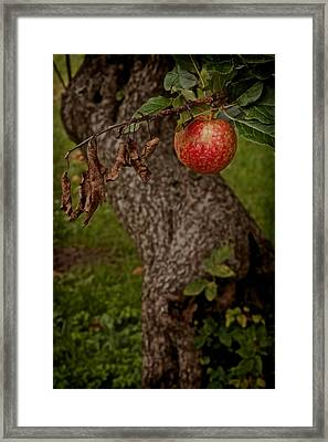No Sin Framed Print