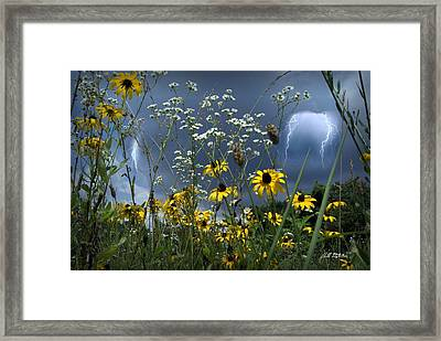 No Vase Needed Framed Print