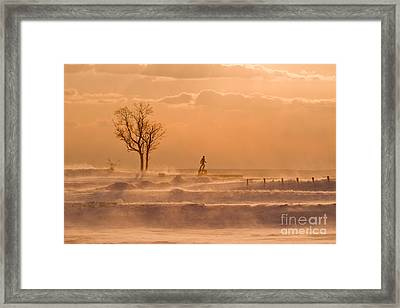 No Walk In The Park Framed Print by Butch Lombardi