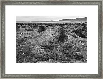 No Water Framed Print