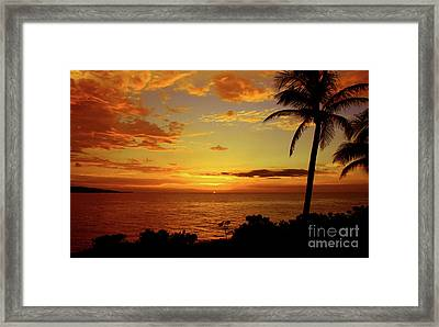 No Worries Framed Print