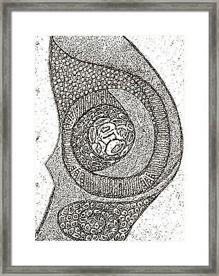 I Am A Winner 11 Framed Print by Tetka Rhu