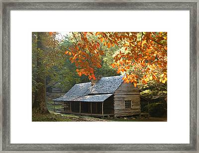 Noah Bud Ogle Farm Autumn Sunshine Framed Print by John Saunders
