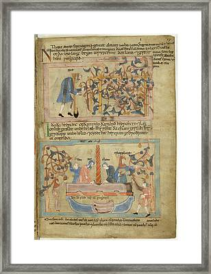 Noah's Wine Harvest Framed Print by British Library