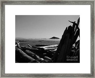 Noble Remnants Framed Print by Marianne NANA Betts