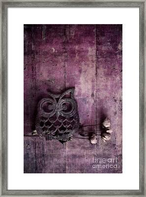 Nocturnal In Pink Framed Print by Priska Wettstein