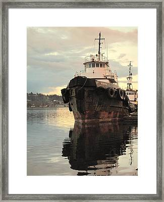 Nokoa At Sunrise Framed Print by Suzy Piatt