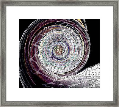 Nomis Framed Print by Raymel Garcia