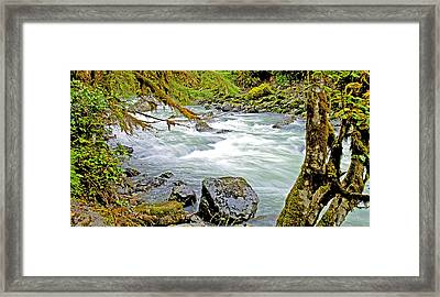 Nooksack River Rapids Washington State Framed Print