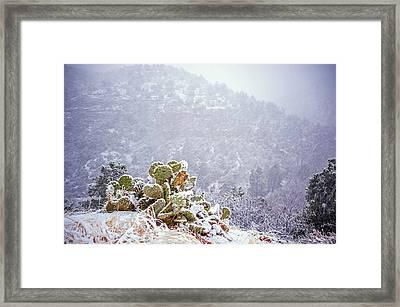 Nopal In Snow Framed Print