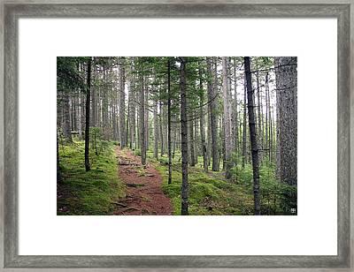 Norembega Framed Print