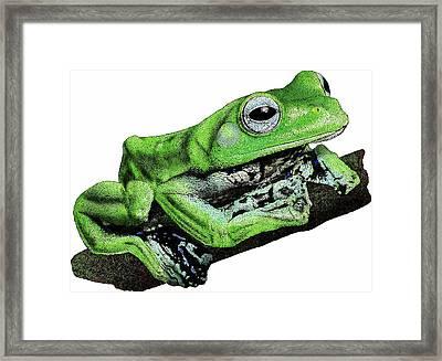 Norhayatis Flying Frog Framed Print