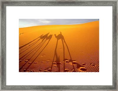 North Africa, Tafilalet, Erfoud Framed Print by Emily Wilson