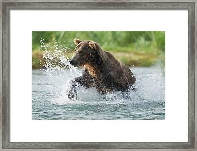 North America, Usa, Alaska, Geographic Framed Print by Joe and Mary Ann Mcdonald