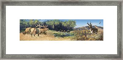 North American Waterhole Framed Print