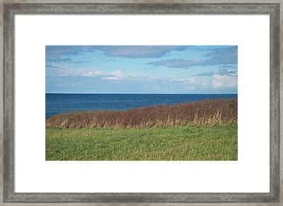 Framed Print featuring the photograph North Beach by Laurie Stewart
