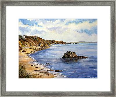 North Beach  Tenby Framed Print by Andrew Read