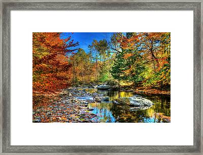 North Branch In Fall Framed Print