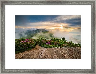 North Carolina Appalachian Trail Spring Blue Ridge Mountains Framed Print by Dave Allen