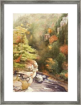 North Carolina Autumn Majesty Framed Print